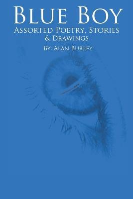 Blue Boy (Paperback)