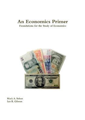 An Economics Primer (Paperback)