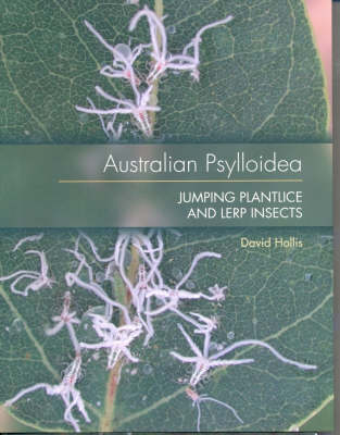 Australian Psylloidea: Jumping Plantlice and Lerp Insects (Paperback)