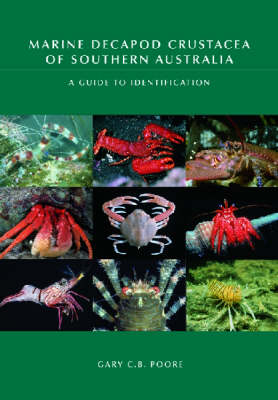 Marine Decapod Crustacea of Southern Australia: A Guide to Identification (Hardback)