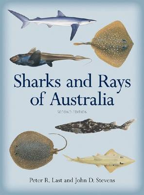 Sharks and Rays of Australia (Hardback)