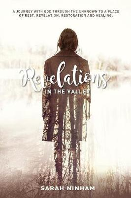 Revelations in the Valley (Paperback)
