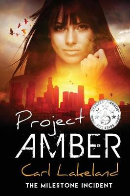 Project Amber - Milestone 2 (Paperback)