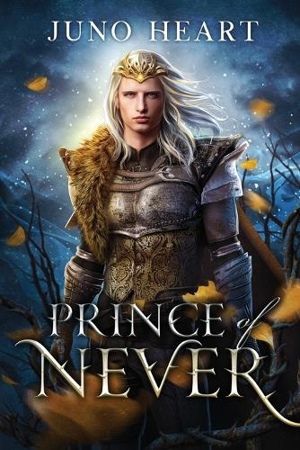 Prince of Never: A Fae Romance - Black Blood Fae 1 (Paperback)
