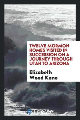 Twelve Mormon Homes Visited in Succession on a Journey Through Utah to Arizona (Paperback)