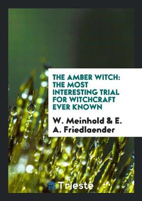 The Amber Witch: The Most Interesting Trial for Witchcraft Ever Known (Paperback)