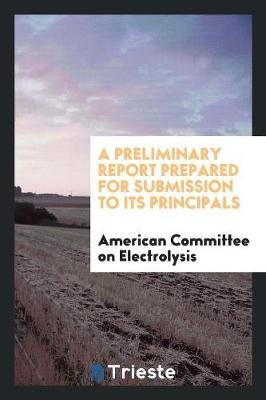 A Preliminary Report Prepared for Submission to Its Principals (Paperback)