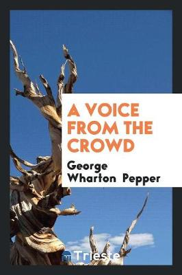 A Voice from the Crowd (Paperback)