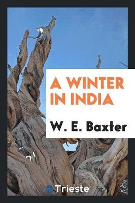 A Winter in India (Paperback)