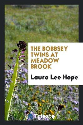 The Bobbsey Twins at Meadow Brook (Paperback)