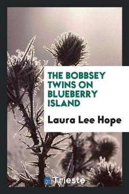 The Bobbsey Twins on Blueberry Island (Paperback)
