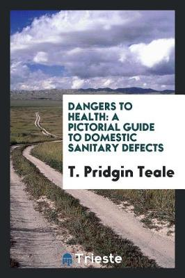 Dangers to Health: A Pictorial Guide to Domestic Sanitary Defects (Paperback)