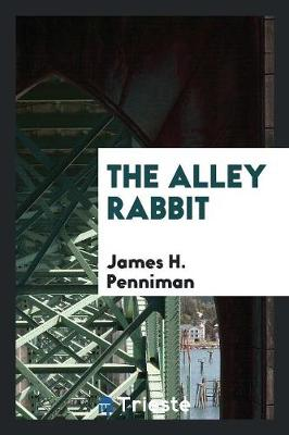 The Alley Rabbit (Paperback)