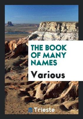 The Book of Many Names (Paperback)