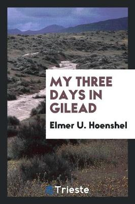 My Three Days in Gilead (Paperback)