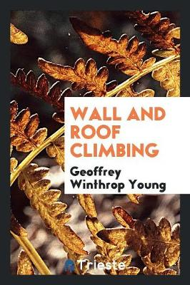 Wall and Roof Climbing (Paperback)