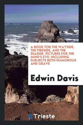 A Book for the Wayside, the Fireside, and the Seaside. Pictures for the Mind's Eye: Including Subjects Both Humorous and Grave (Paperback)