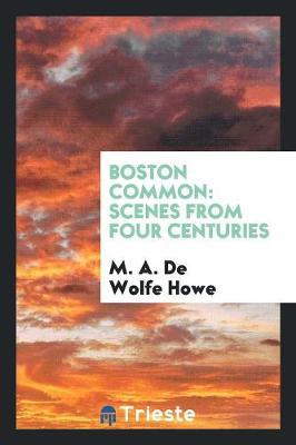 Boston Common: Scenes from Four Centuries (Paperback)