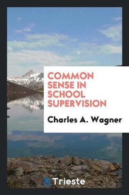 Common Sense in School Supervision (Paperback)