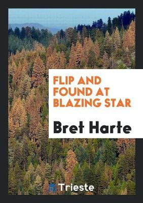 Flip and Found at Blazing Star (Paperback)