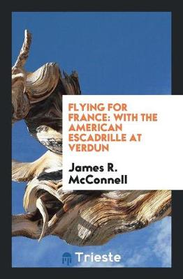Flying for France: With the American Escadrille at Verdun (Paperback)