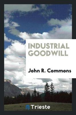 Industrial Goodwill (Paperback)