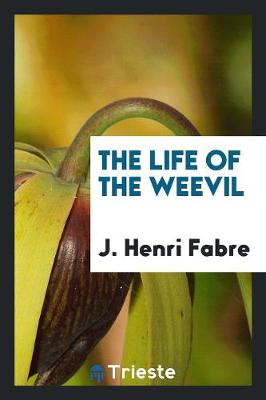 The Life of the Weevil (Paperback)