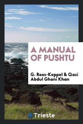 A Manual of Pushtu (Paperback)