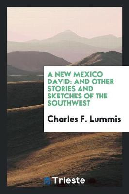 A New Mexico David: And Other Stories and Sketches of the Southwest (Paperback)