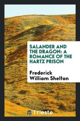Salander and the Dragon: A Romance of the Hartz Prison (Paperback)