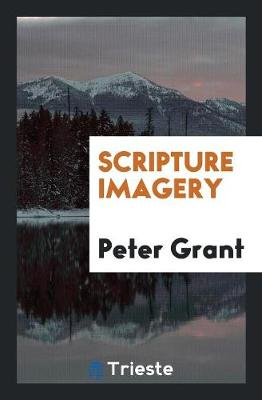 Scripture Imagery (Paperback)