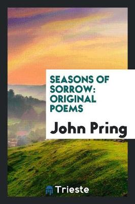 Seasons of Sorrow: Original Poems (Paperback)