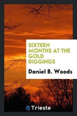 Sixteen Months at the Gold Diggings (Paperback)