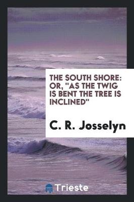 The South Shore: Or, as the Twig Is Bent the Tree Is Inclined (Paperback)