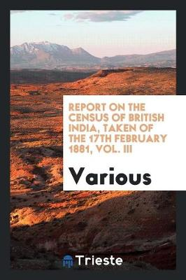 Report on the Census of British India, Taken of the 17th February 1881, Vol. III (Paperback)
