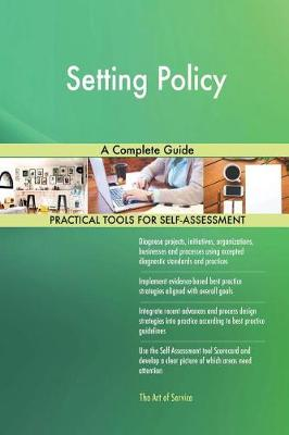 Setting Policy a Complete Guide (Paperback)