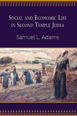 Social and Economic Life in Second Temple Judea (Paperback)
