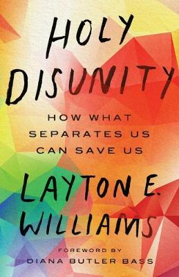 Holy Disunity: How What Separates Us Can Save Us (Paperback)