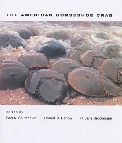 The American Horseshoe Crab (Hardback)