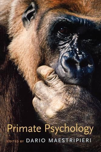 Primate Psychology (Paperback)