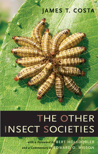 The Other Insect Societies (Hardback)