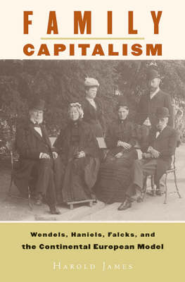 Family Capitalism: Wendels, Haniels, Falcks, and the Continental European Model (Hardback)
