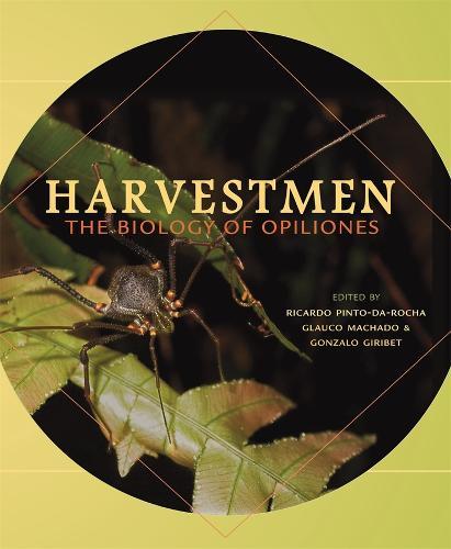 Harvestmen: The Biology of Opiliones (Hardback)