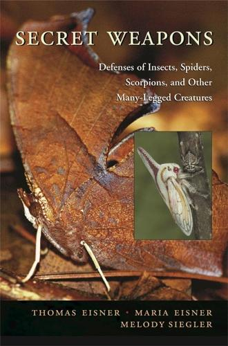 Secret Weapons: Defenses of Insects, Spiders, Scorpions and Other Many-Legged Creatures (Paperback)