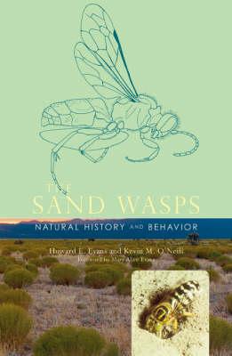 The Sand Wasps: Natural History and Behavior (Hardback)
