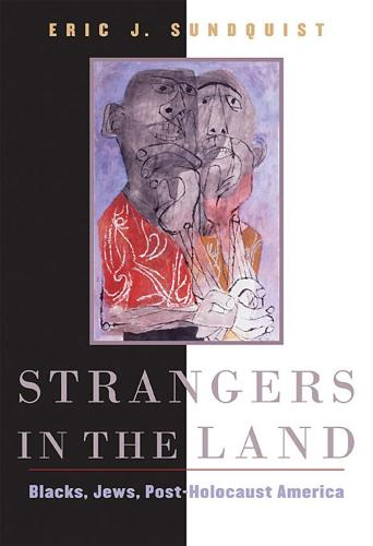 Strangers in the Land: Blacks, Jews, Post-Holocaust America (Paperback)