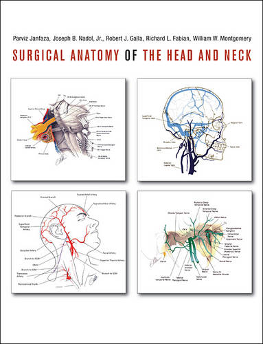 Surgical Anatomy of the Head and Neck (Hardback)