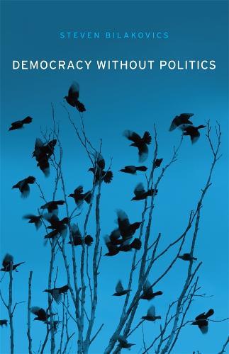Democracy without Politics (Hardback)