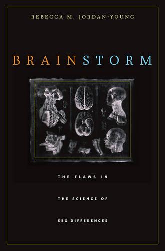 Brain Storm: The Flaws in the Science of Sex Differences (Paperback)