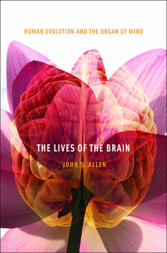 The Lives of the Brain: Human Evolution and the Organ of Mind (Paperback)